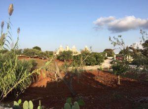 Meditation und Achtsamkeit in Apulien Daniela Weh Gesundheitsberatung