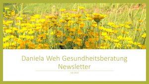 Newsletter 2020 Daniela Weh Gesundheitsberatung