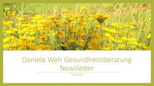 Newsletter August 2020 Daniela Weh Gesundheitsberatung