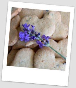 Rezept Lavendelherzen - Daniela Weh Gesundheitsberatung